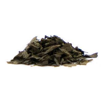 Salvia Extract 15x
