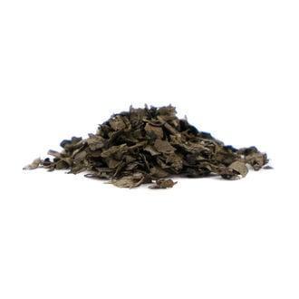 Salvia Extract 40x