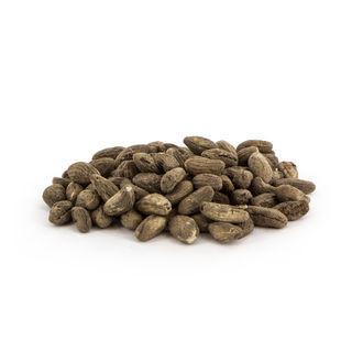 Voacanga Africana (5 gram)
