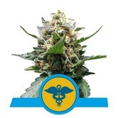 Royal Medic (Royal Queen Seeds) feminized