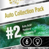 Auto Collection Pack 2 (Paradise Seeds) feminized