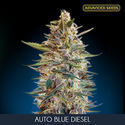 Auto Blue Diesel (Advanced Seeds) feminized