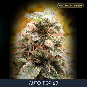 Auto Top 69 (Advanced Seeds) feminized
