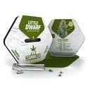 Little Dwarf Autoflowering (Zambeza) feminized