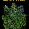 VIP Auto Mix (VIP Seeds) feminized
