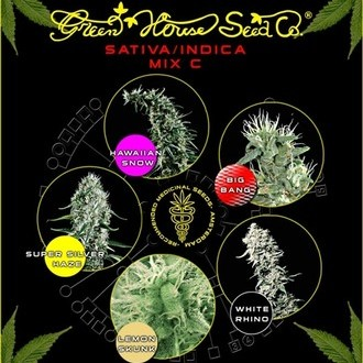 Sativa/Indica Mix C (Greenhouse Seeds) feminized