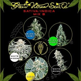 Sativa/Indica Mix B (Greenhouse Seeds) feminized