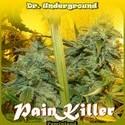 PainKiller (Dr. Underground) feminisiert