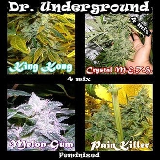 Killer Mix (Dr. Underground) feminized