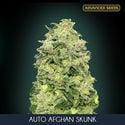 Auto Afghan Skunk (Advanced Seeds) feminized
