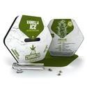 Vanilla Ice Autoflowering (Zambeza) feminized