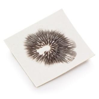 Psilocybe Mexicana Truffel Sporenprint