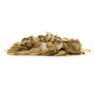Hop Bloemen (20 gram)