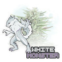White Monster Automatic (Zamnesia Seeds) feminized