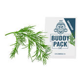 Dille (Anethum graveolens) Buddy Pack
