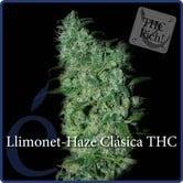 Llimonet Haze Classic THC (Elite Seeds ) feminized