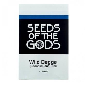 Wild Dagga (Leonotis leonurus) 10 Zaden