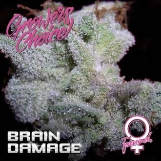 Brain Damage (Growers Choice) gefeminiseerd