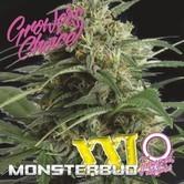 Monsterbud XXL Auto (Growers Choice) Feminized