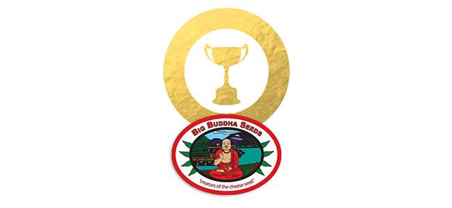Big Buddha Seeds Awards