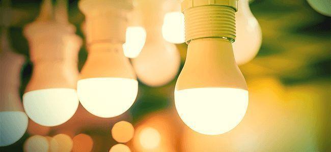 LED Vs HID In Cannabis Kweek