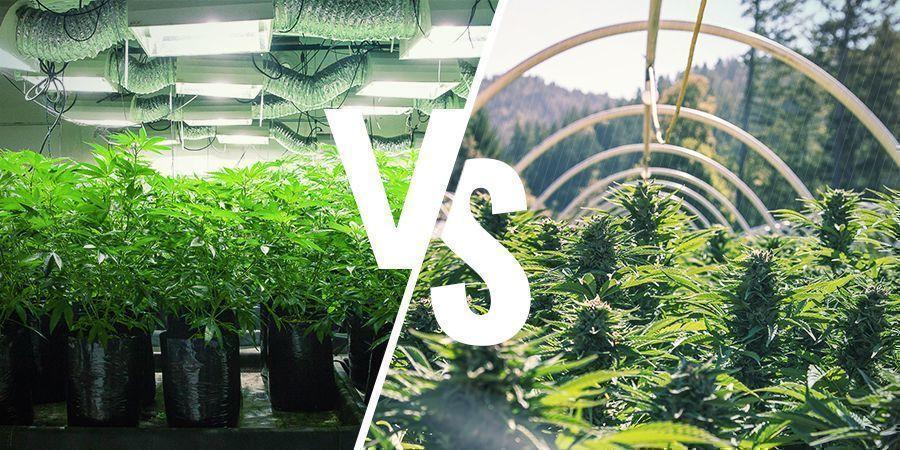 Wat is het verschil tussen binnen en buiten kweken?