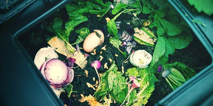 Hoe Maak Je Je Eigen Compost