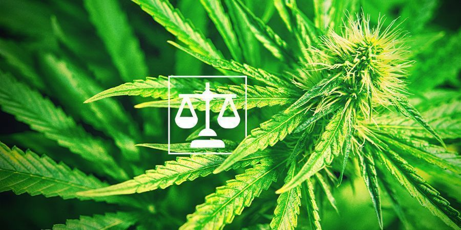 Wettigheid Cannabis