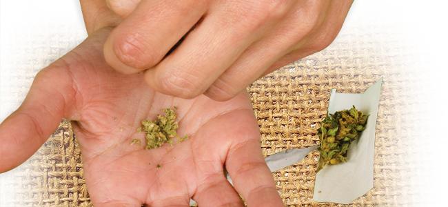 Cannabis Grinden: Gebruik Je Handen