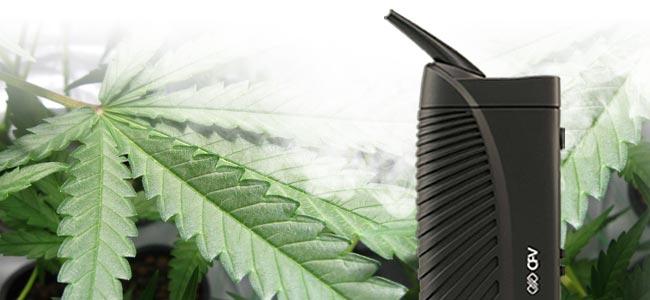 Cannabis Roken Vaporizer