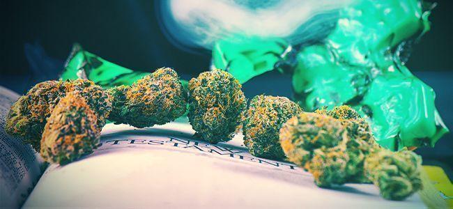 Beste Boeken Over Het Kweken Van Cannabis