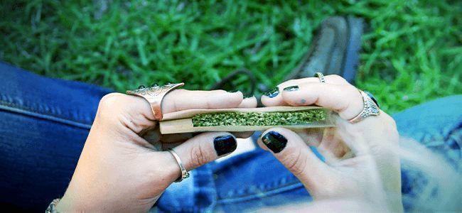 Cannabis Blunt