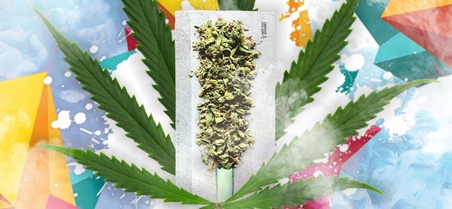 Spliff Tabak Cannabis