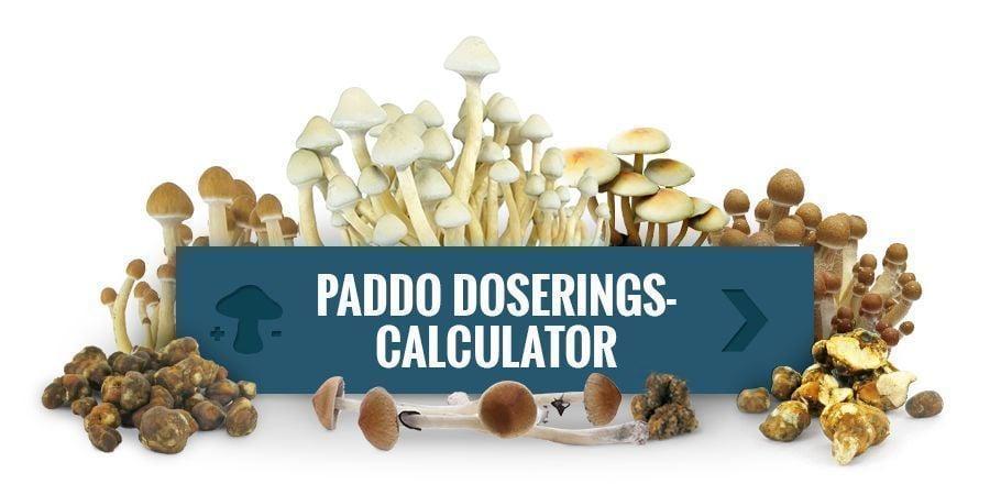 Paddo Doseringscalculator