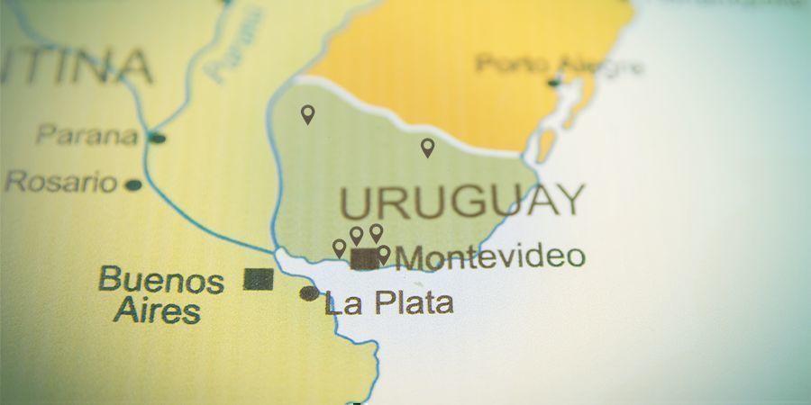 Minder Dan 20 Erkende Apotheken In Uruguay Mogen Cannabis Verkopen