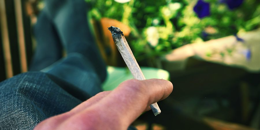 BAKED/TIJDELIJK VAN DE WERELD Cannabis