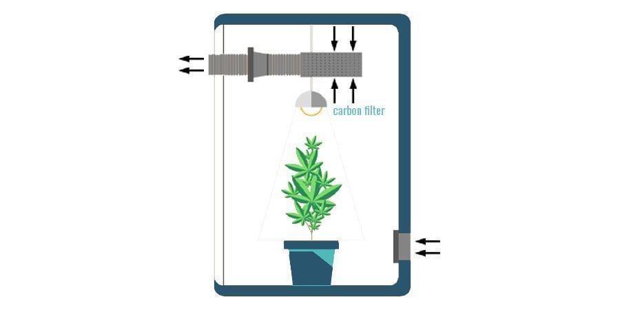 Waar plaats je een koolstoffilter in je kweekruimte?