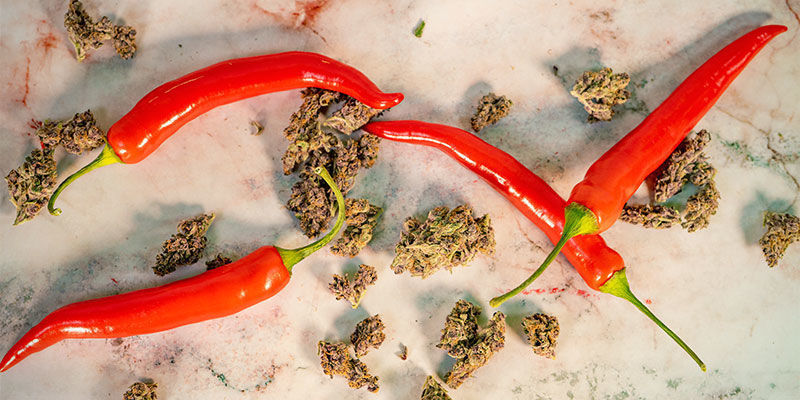Hebben wietplanten en hete pepers iets gemeenschappelijk?