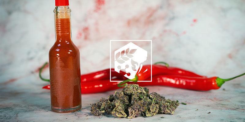 de voordelen van hete pepers in je eten: Voedingswaarde