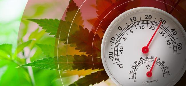 Temperatuur En Luchtvochtigheid