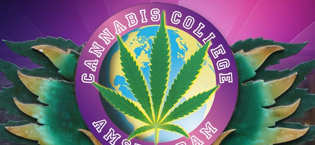 Cannabis Culture Awards En Het Cannabis College