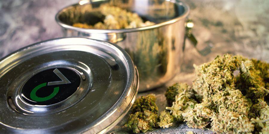 Uitgedroogde wiettoppen rehydrateren: Bevochtigers voor cannabis