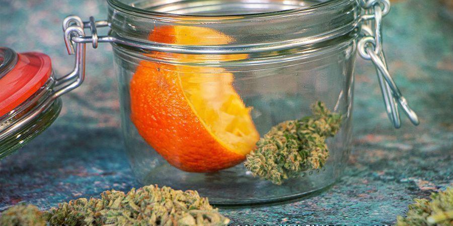 Uitgedroogde wiettoppen rehydrateren: Sinaasappelschillen