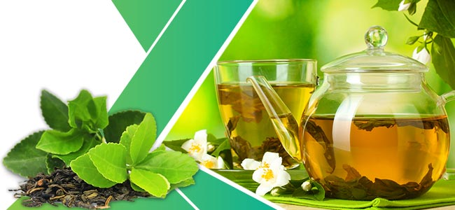 Herbs Losing Weight: Green Tea