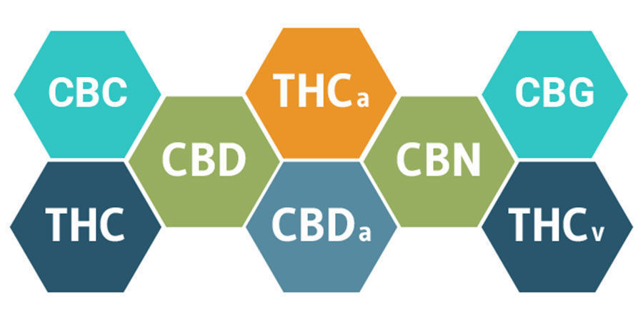 Entourage effect en cannabinoïden