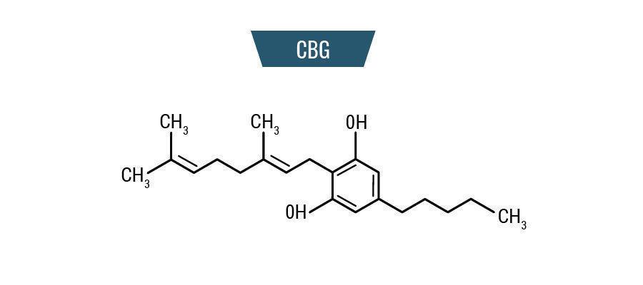 Molecule CBG