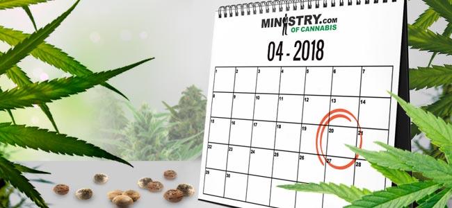 Zaadbank Van De Maand: Ministry Of Cannabis