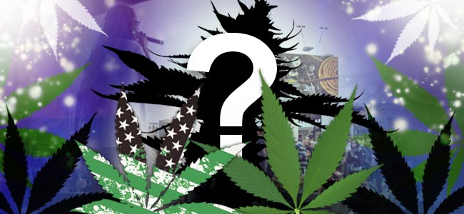 Fastbuds Cannabis Zaden