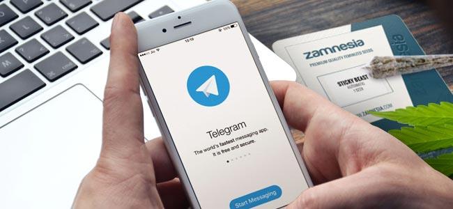 WAAROM ZAMNESIA VOLGEN OP TELEGRAM?