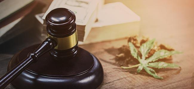LEGALE CANNABIS IN CANADA: WAT ZEGT DE WET?